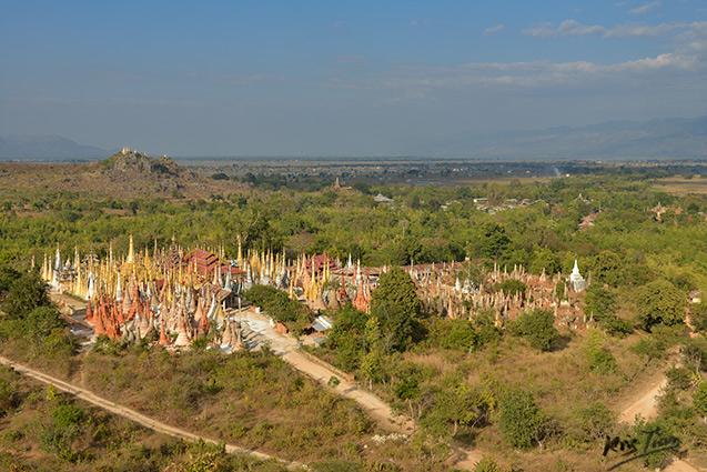 Champ-de-pagodes