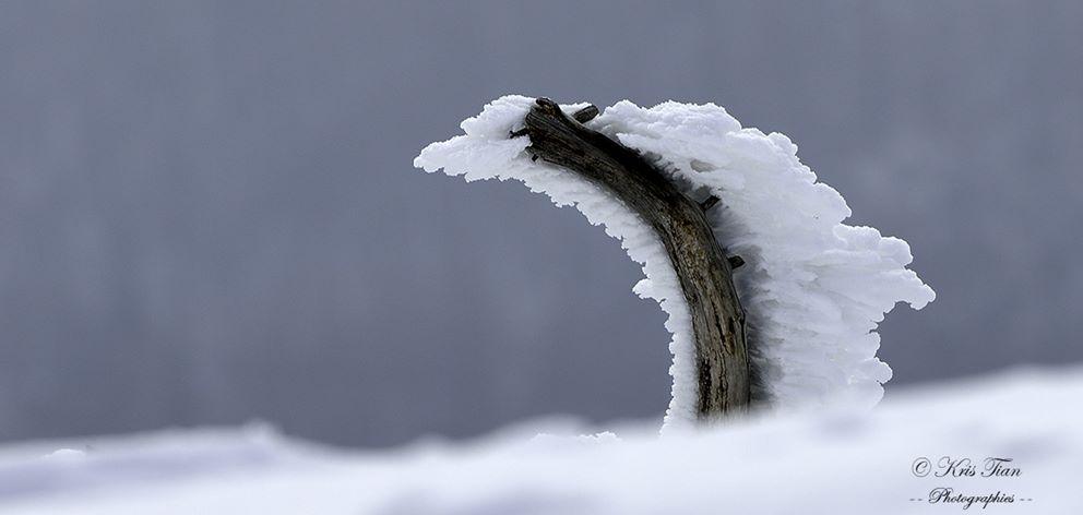 Aigoual blizzard