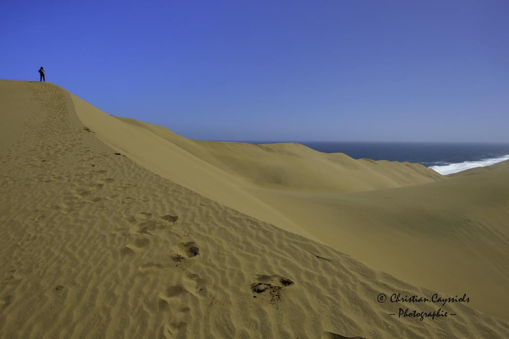 Dune du Namib plongeant dans l'océan