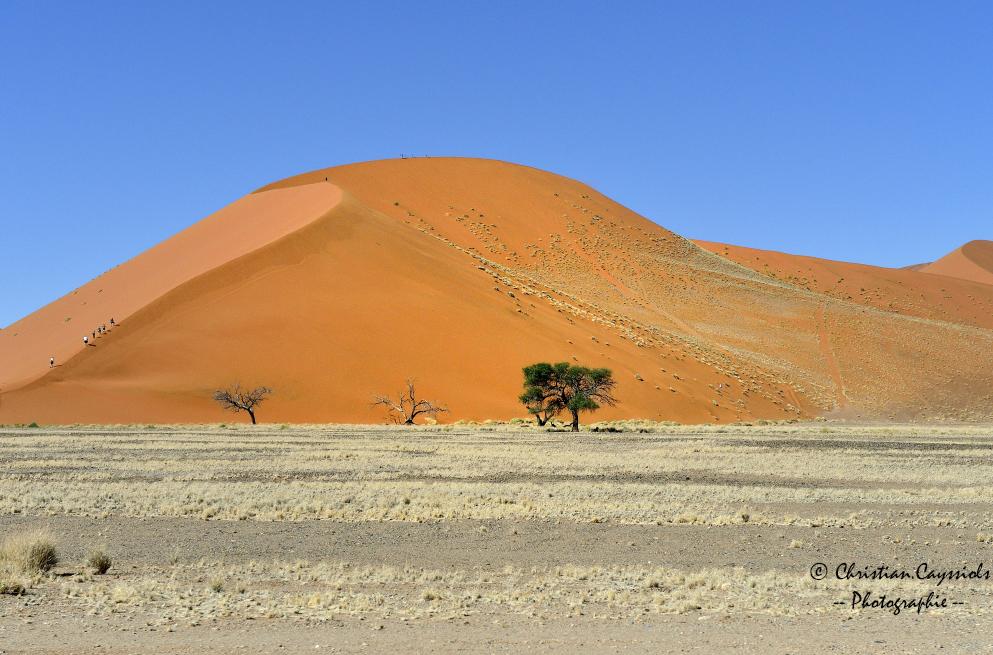 Dune du Namib