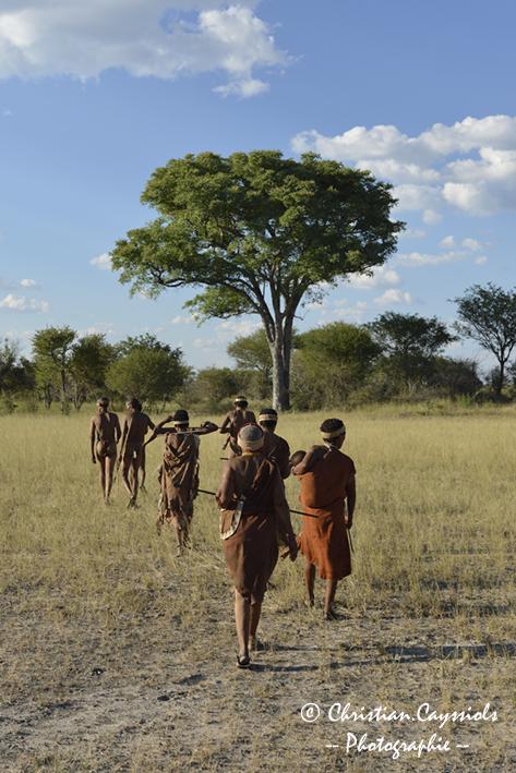 Le peuple San à la recherche de gibier